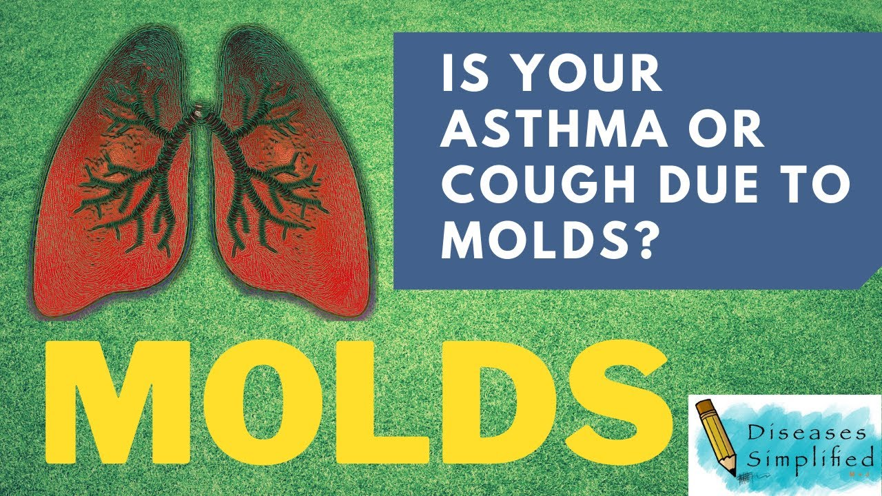 Must Know Symptoms of Mold Exposure