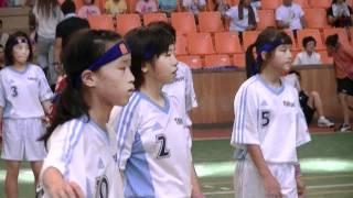 第28回近畿小学生ハンドボール大会の決勝戦?