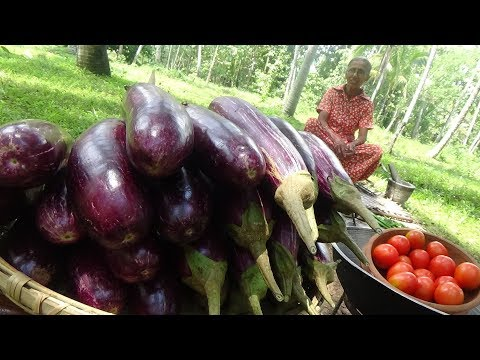 Eggplant Recipe ❤ Cooking Eggplant (Brinjal) Masala Curry in my Village by Grandma | Village Life