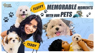 Memorable Moments With Our Pets || Sahithi || Vinni || Sekhar Studio ||