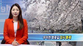 강북구, 코로나19 확산 방지 위해 우이천 벚꽃길 임시…