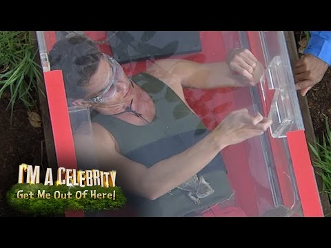 Joey Essex Needs Help to Complete a Basic Puzzle | I'm A Celebrity...Get Me Out Of Here!