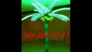 Светодиодные пальмы.wmv