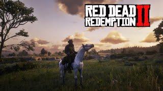(LIVE FR) L'HISTOIRE CONTINUE SUR RED DEAD REDEMPTION 2 !!!