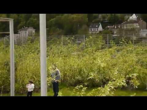 Michel desvigne paysagiste seguin island gardens for Paysagiste boulogne billancourt