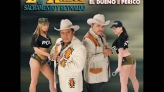 Play Olfateando El Animal