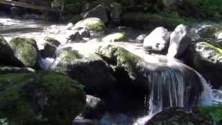 In den Gumpen: Wasserfall am Tegernsee, Bayern, Deutschland