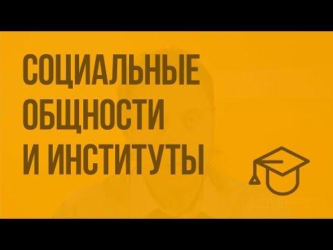 Социальные общности и институты. Видеоурок по обществознанию 11 класс