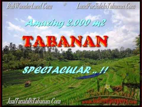 Affordable Land for sale in Tabanan - by Bali Real Property 2018