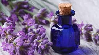 Lavender Essential Oil To Aid In Weight Loss - Natural Weight Loss Tips