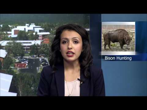 U.S. House to Vote on Grand Canyon Bison Management Bill