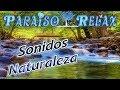 LA MUSICA DEL RIO, SONIDOS DE LA NATURALEZA, RELAJANTE, RELAX, RELAXING, RELAXATION