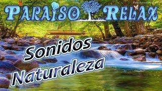 LA MUSICA DEL RIO, SONIDOS DE LA NATURALEZA RELAJANTES PARA ESTUDIAR, TRABAJAR, DORMIR, NATURE
