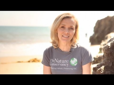 Thank You from The Nature Conservancy