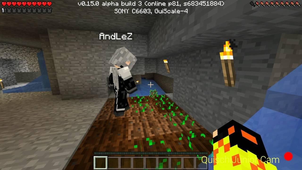 MCPE Alpha Ackerbau Im Keller Minecraft - Alphastein skin fur minecraft pe