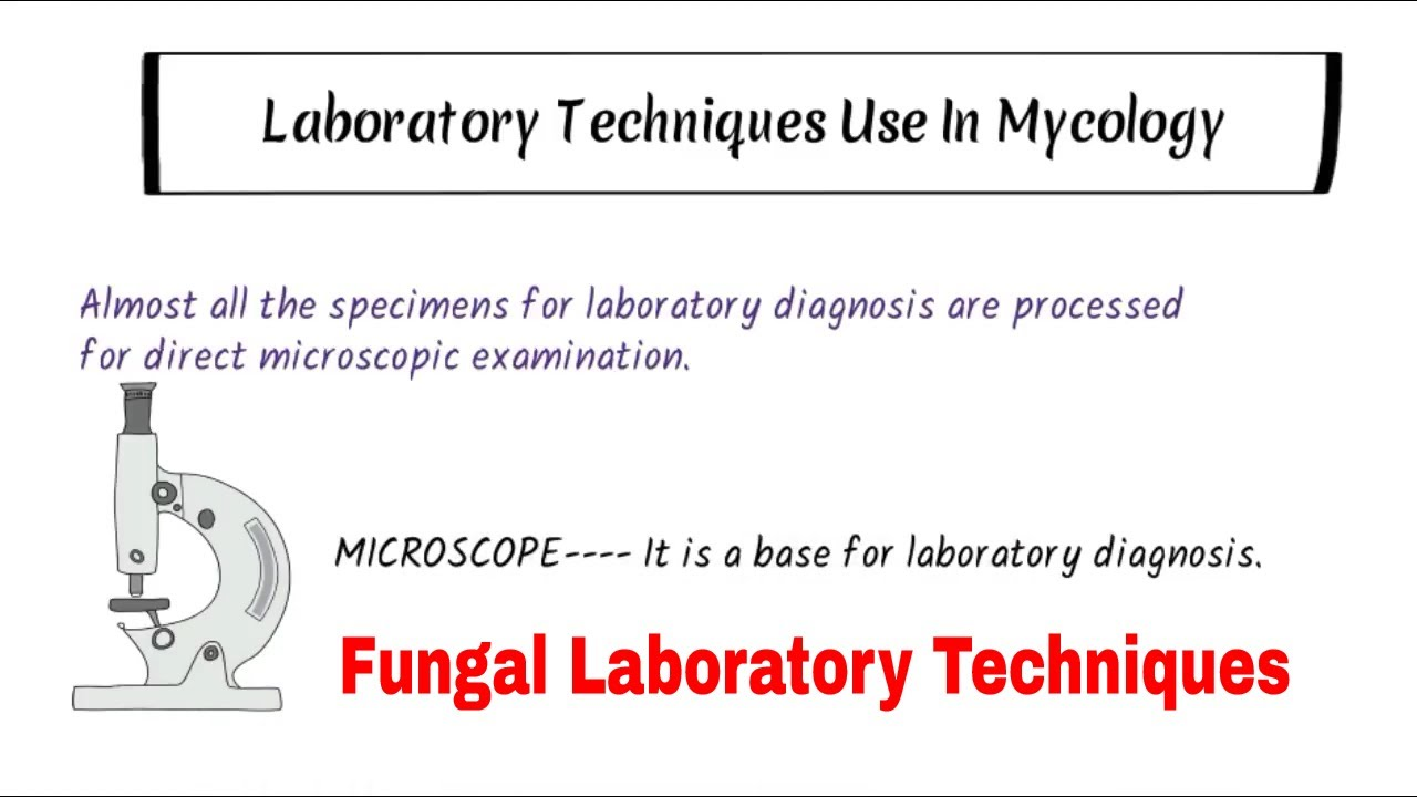 Laboratory Investigation Of Fungal Infection ||Koh , Calcoflour white  ,India ink stain|| Microscopy