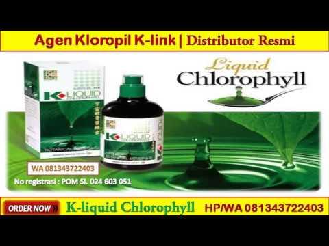 WA 081343722403 Harga Uie K-Liquid Chlorophyll
