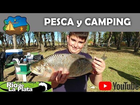 Bogas en el Club de Pesca del Rio de la Plata en Punta Lara