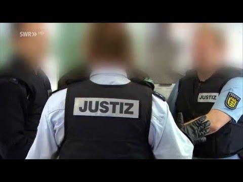 Pfotenabdrücke im Weiß - Dustys erste Begegnung mit Schnee by JenChaosиз YouTube · Длительность: 1 мин30 с