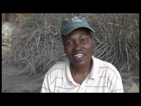 How to pronounce Zulu clicks