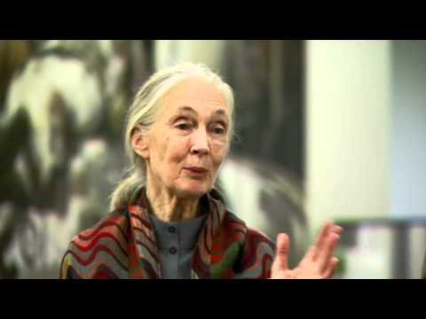 Conversation with Jane Goodall at the World Bank