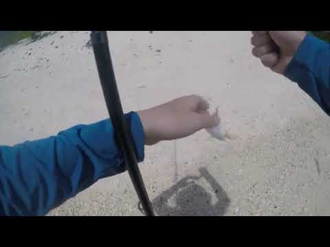 Fishing In The Grand Cayman