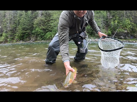 Breaking My Own Rules   Fly Fishing On The North Fork Coeur D'Alene River