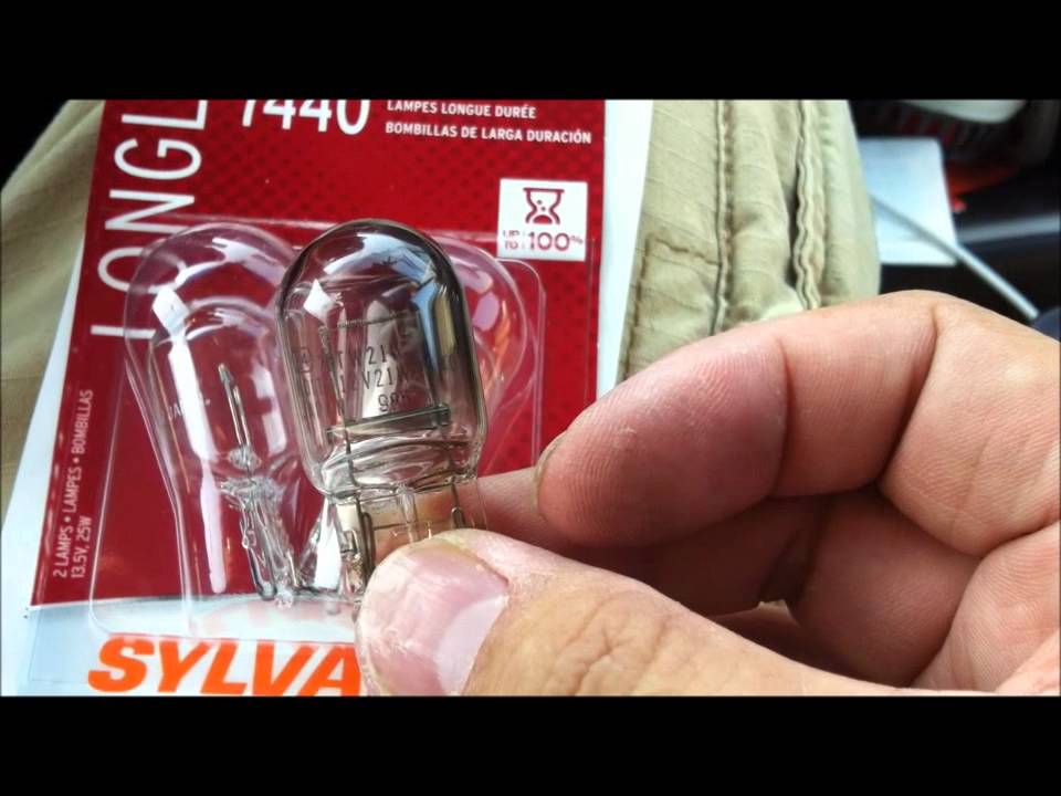 Rear Light Bulb