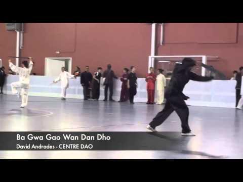 FEJIDA Campeonato de Espana de Wu Shu 2013 - Puño del Sur Adulto