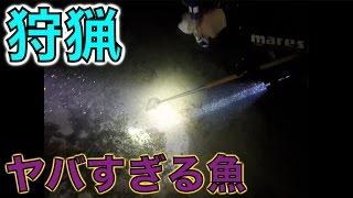 沖縄の海で銛突きバトルしたら超猛毒の魚獲れた!!!