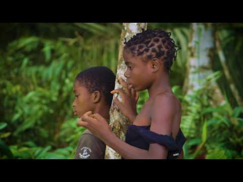 Equatorial Guinea: Combating Malaria