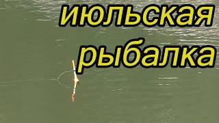 Рыбалка летом на реке 17 июля 2021