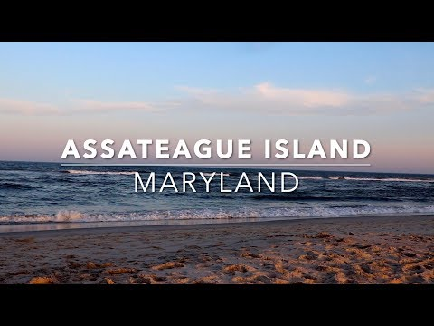 Explore | Assateague Island National Seashore (U.S. National Park Service), Berlin, Maryland