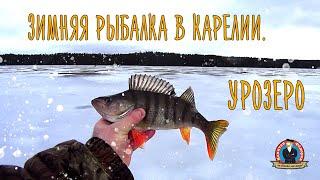 Зимняя рыбалка в Карелии Урозеро капитанандрейфёдоров рыбалка зимняярыбалка видеопрорыбалку
