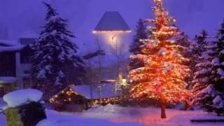 Chúa Đã Giáng Sinh | Nhạc Thánh Ca | Nhạc Noel