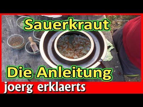 Sauerkraut herstellen ohne stampfen Die perfekte Anleitung Tutorial Nr 208