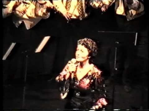 Avram Iancu 1992 Marjolein Rommerts zang; Un tigan aveu un casa, Pandelasul
