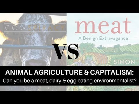 Can you be a meat, dairy, or egg eating environmentalist? | Animal Agriculture & Capitalism