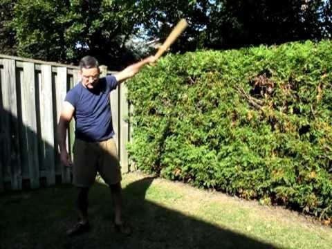 Baseball Bat Exercises--Indian Club Style.MOV