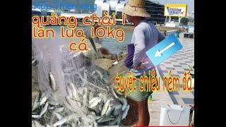 Tuyệt chiêu ném đá lùa cá đối vào bờ, Cú quăng chài úp 10 Kg cá, kiếm tiền triệu mỗi ngày ở VungTau