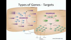 Use of Pharmacogenetics in Clinical Medicine - Tristan Sissung
