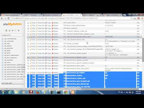 WordPress, WooCommerce, Database Analize and Thoughts - YouTube