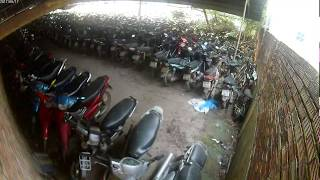 Lãng Phí ở Việt Nam | Hàng Triệu Xe Máy Bị Bỏ Hoang ở Bãi xe Vi pham Giao Thông 2