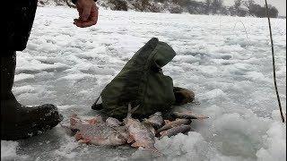 Рыбалка на Оке.Вертолеты или безмотылка.Что предпочла рыба.ч.1