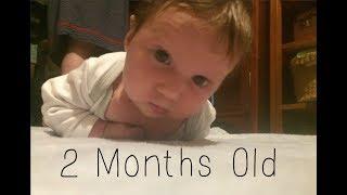 Baby || 2 Month Update! ||