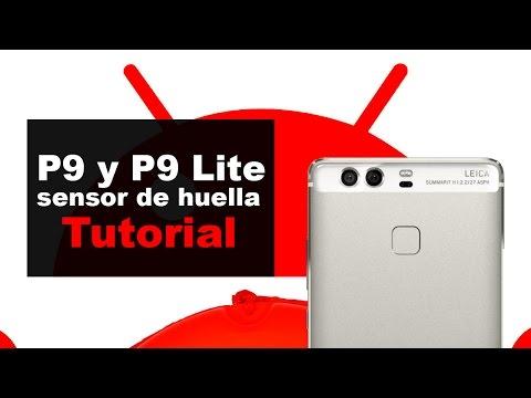 Huawei P9 y P9 Lite: configurar y utilizar el sensor de huella dactilar