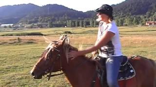 Обучение езде на лошади в Бакуриани