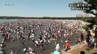 人、人、人―。横浜市金沢区の海の公園は5日、潮干狩り客で埋まった(午...