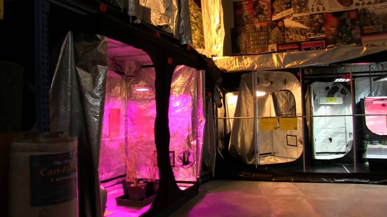 Biotops growshop visite du magasin la jonquera youtube for Restaurant la jonquera