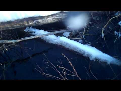 Otter Trap Check Feb 20, 2018